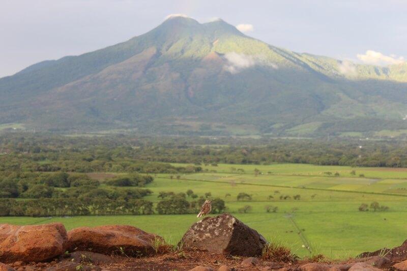 Miravalles volcán